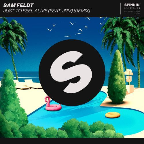 Just To Feel Alive (feat. JRM) [Remix]